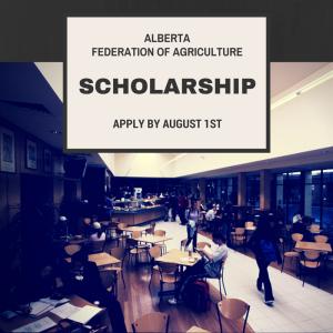 AFA Scholarship